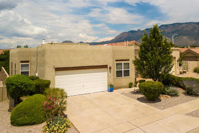 Albuquerque Single Family Home For Sale: 9715 Larnaca Road NE