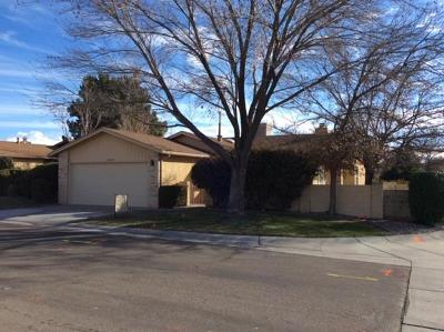 Albuquerque Single Family Home For Sale: 10600 Clyburn Park Drive NE