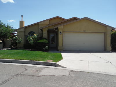 Albuquerque Single Family Home For Sale: 10900 Echo Park Drive NE