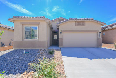 Albuquerque Single Family Home For Sale: 6728 Oro Valley Road NW