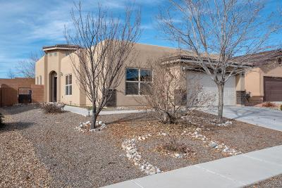 Albuquerque Single Family Home For Sale: 11009 Gladiolas Place