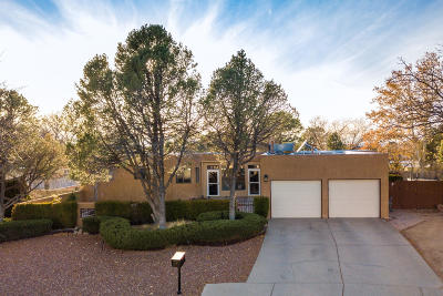 Albuquerque Single Family Home For Sale: 7701 Hendrix Road NE