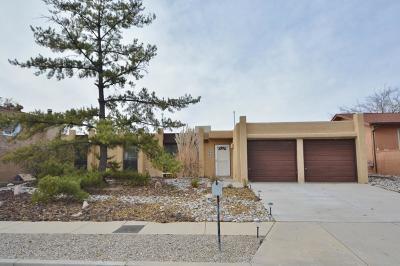 Albuquerque Single Family Home For Sale: 7709 Midge Street NE