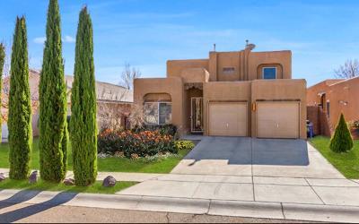 Albuquerque Single Family Home For Sale: 6800 Butte Volcano Road NW
