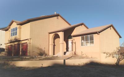 Albuquerque Single Family Home For Sale: 10200 Silver Grade Court NW