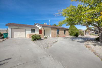 Rio Rancho Single Family Home For Sale: 87 Dakota Morning Road NE