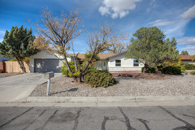 Rio Rancho Single Family Home For Sale: 4005 Torrey Pines Road SE