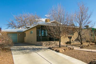 Albuquerque Single Family Home For Sale: 1624 Princeton Drive SE