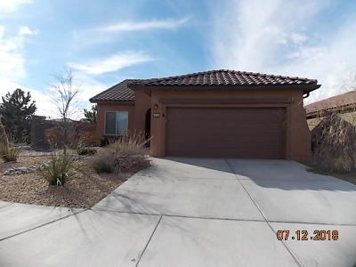 Albuquerque Single Family Home For Sale: 9601 Iron Rock Drive NW