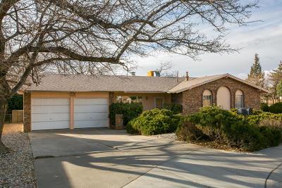 Albuquerque Single Family Home For Sale: 2309 Saturn Place NE