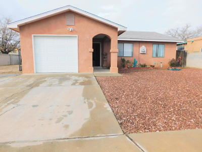 Albuquerque Single Family Home For Sale: 1208 Valley View SW