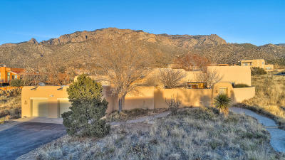 Sandia Heights Single Family Home For Sale: 207 Live Oak Road NE