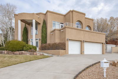 Albuquerque Single Family Home For Sale: 1604 Wells Drive NE