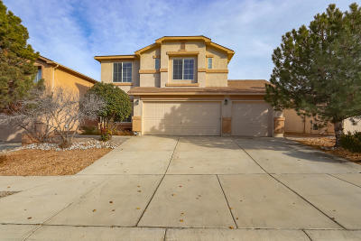 Albuquerque Single Family Home For Sale: 9512 Cerro Largo Place NW