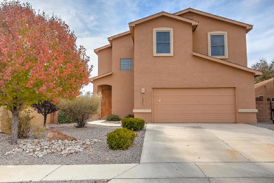 Rio Rancho Single Family Home For Sale: 3241 San Ildefonso Loop NE