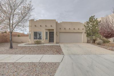 Albuquerque Single Family Home For Sale: 3131 Rio Linda Drive SW