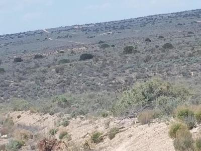 Rio Rancho Residential Lots & Land For Sale: 405 Hondo Road NW