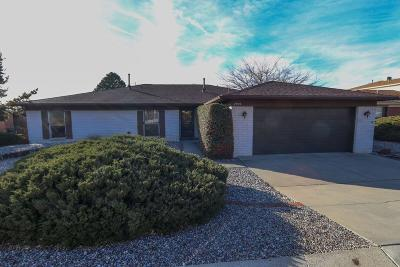 Albuquerque Single Family Home For Sale: 2509 Punta De Vista Drive NE