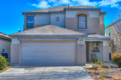 Single Family Home For Sale: 540 Fern Spring Drive SW