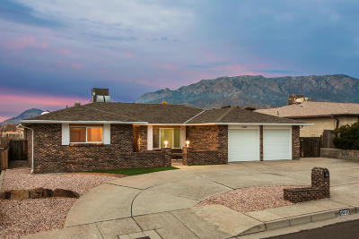 Albuquerque Single Family Home For Sale: 12201 Key West Drive
