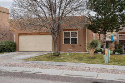 Albuquerque Single Family Home For Sale: 13328 Lodestone Trail SE
