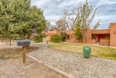 Albuquerque Single Family Home For Sale: 10047 Los Cansados Road NW