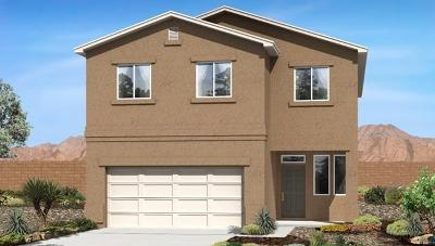 Albuquerque NM Single Family Home For Sale: $264,760