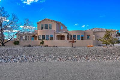 Rio Rancho Single Family Home For Sale: 713 Talon Court NE