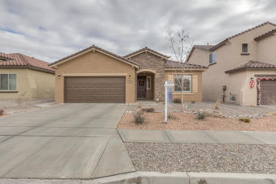 Albuquerque Single Family Home For Sale: 9608 Andesite Drive NW