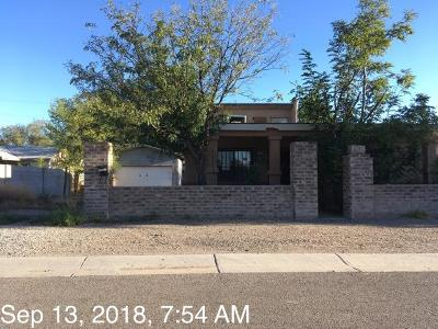 Albuquerque Single Family Home For Sale: 1953 De Baca Circle SW