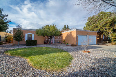 Albuquerque Single Family Home For Sale: 6909 Rosewood Road NE