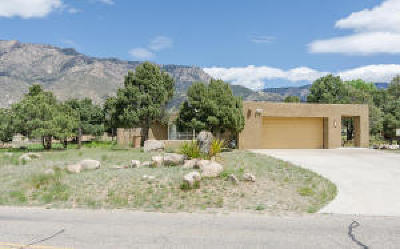 Sandia Heights Single Family Home For Sale: 805 Tramway Lane NE