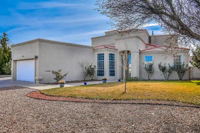 Rio Rancho Single Family Home For Sale: 3546 Newcastle Drive SE