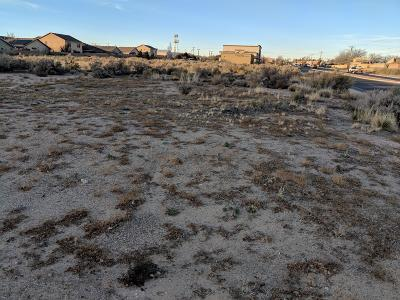 Rio Rancho Residential Lots & Land For Sale: 1107 Golf Course Road SE