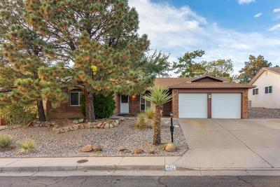 Albuquerque Single Family Home For Sale: 4611 Jamaica Drive NE