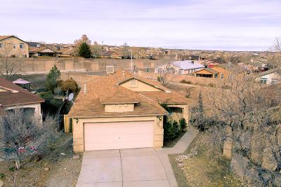 Albuquerque Single Family Home For Sale: 5951 Cygnus Avenue NW