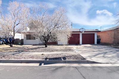 Albuquerque Single Family Home For Sale: 1736 Blume Street NE