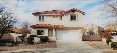 Albuquerque Single Family Home For Sale: 1000 Casa Maria Road NE