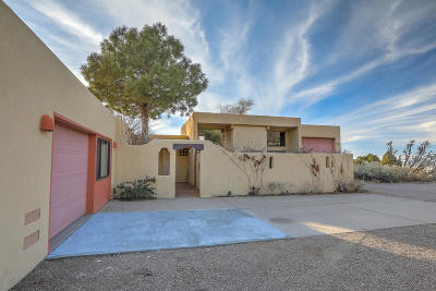 Albuquerque Single Family Home For Sale: 725 Tramway Lane NE #Unit 1