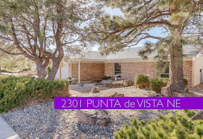 Albuquerque Single Family Home For Sale: 2301 Punta De Vista Drive NE