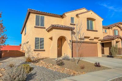 Rio Rancho Single Family Home For Sale: 3513 Llano Vista Loop NE