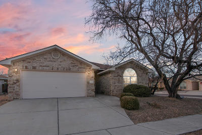 Albuquerque Single Family Home For Sale: 3609 Sierra Rica Drive NW