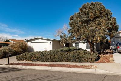 Albuquerque Single Family Home For Sale: 13001 Roma Avenue NE