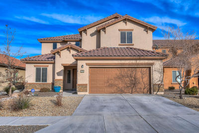Albuquerque Single Family Home For Sale: 9632 Slickrock Court NW