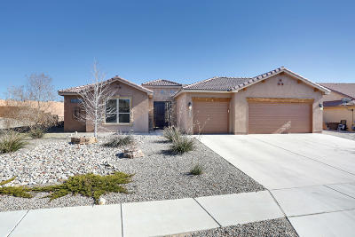 Sandoval County Single Family Home For Sale: 1800 Roble Drive SE