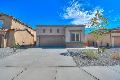 Los Lunas Single Family Home For Sale: 1665 Valle Vista Road NW