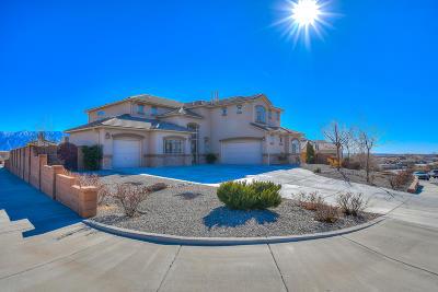 Rio Rancho Single Family Home For Sale: 1104 Coyote Bush Road NE