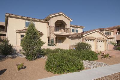Albuquerque Single Family Home For Sale: 4501 Atherton Way NW