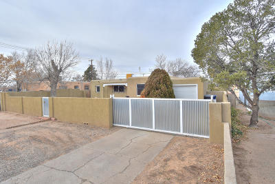 Albuquerque Single Family Home For Sale: 733 Louisiana Boulevard SE