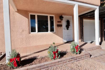 Albuquerque Single Family Home For Sale: 1513 Bryn Mawr Drive NE